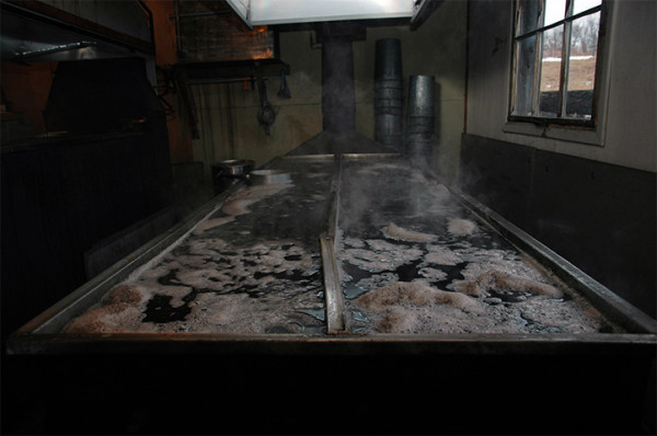 """We transfer the filtered sap to the evaporator, which is a 12"""" deep trough sitting atop a roaring fire."""